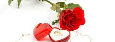 Love Red Rose Wedding Ring Cover Photo