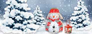 Funny Snowman Cover Photo