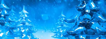 Ice Christmas Trees Cover Photo