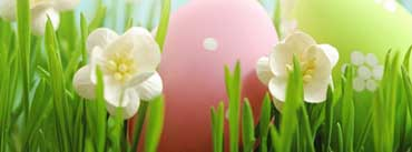 Happy Easter Flowers Cover Photo