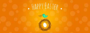 Happy Easter Little Chick Cover Photo