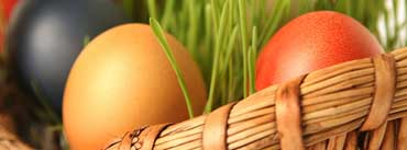 Happy Easter Egg Basket Cover Photo