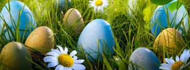 Easter Egg Hunt Cover Photo