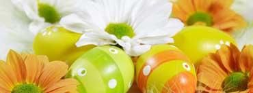 Orange Green Easter Eggs Cover Photo