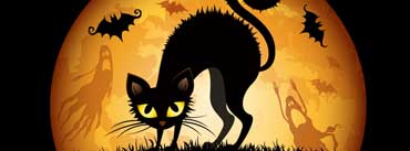Halloween Cat And Bats Cover Photo