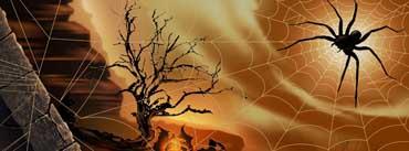 Halloween Spirit Spider Web Cover Photo