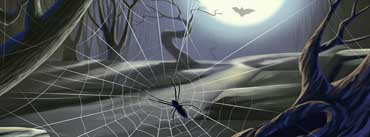Spider Web Full Moon Cover Photo