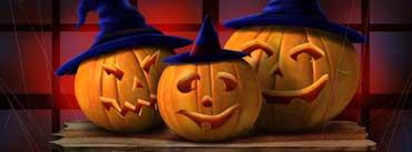 Three Pumpkins Cover Photo