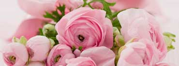 Pink Flowers Bridal Bouquet Cover Photo