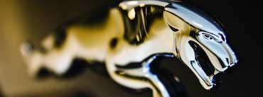 Jaguar Logo Close Up Cover Photo