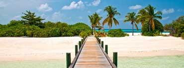 Tropical Dock Cover Photo