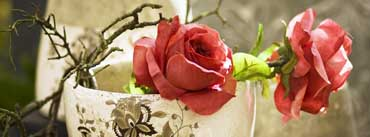 Artificial Roses Cover Photo