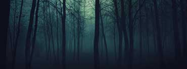 Dark Forest Cover Photo