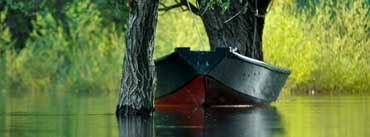 Boat With Green Trees Cover Photo