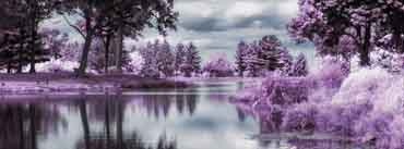 Infrared Pond Cover Photo