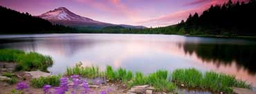 Mountain Lake And Flowers Cover Photo