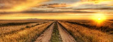 Country Road At Sunset Cover Photo