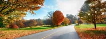 Landscape Autumn Fall Cover Photo