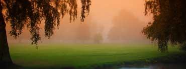 Park Morning Fog Cover Photo