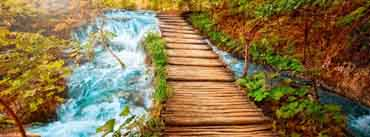 Wooden Path Along The Stream Cover Photo