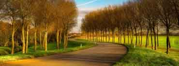 Road Between Field And Forest Cover Photo