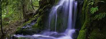 Beautiful Forest Waterfall Cover Photo