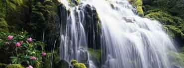 White Waterfall Cover Photo