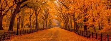 Beautiful Autumn Landscape Cover Photo