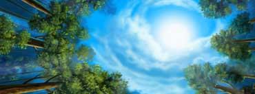 Sunny Sky Cover Photo