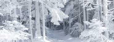 Blizzard Traces Cover Photo