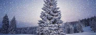 Fairy Tale Winter Cover Photo
