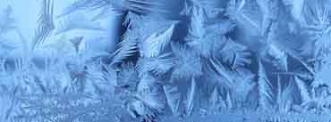 Frost Cover Photo