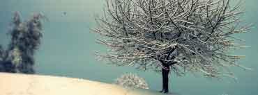 Vintage Winter Landscape Cover Photo