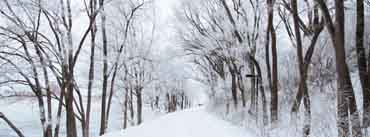 White Snowy Road Cover Photo