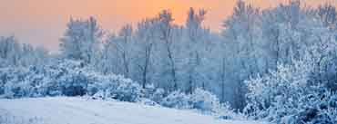Winter Snow Trees Sunset Cover Photo