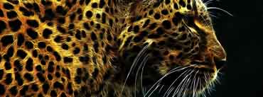 Leopard Cover Photo
