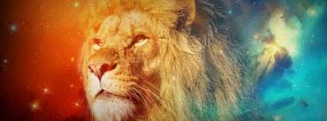 Leon Fugaz Lion Cover Photo