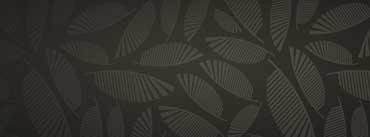Leaves Pattern Cover Photo