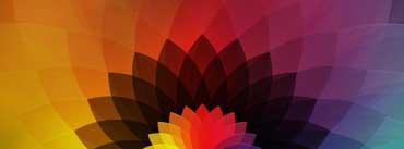 Rainbow Flower Cover Photo