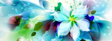 Abstract Flower Cover Photo