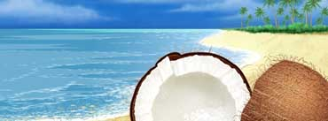 Exotic Coconut On The Beach Cover Photo