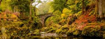 Foleys Bridge Autumn Cover Photo