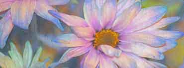 Pastel Cover Photo
