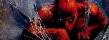 Spider Man Illustration Cover Photo