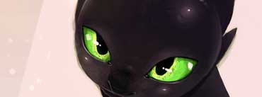 The Night Fury How To Train Your Dragon Cover Photo