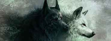 The Wolves Cover Photo