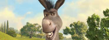 Donkey Shrek Cover Photo