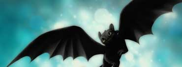 Night Fury Toothless Cover Photo