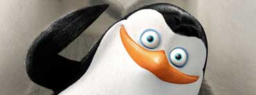 Private Penguins Of Madagascar Cover Photo