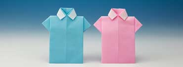 Origami Blue Pink Shirts Cover Photo